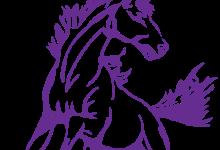 Judy Nelson Elementary School logo